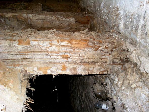 Dusche Im Keller Schimmel : Balken in der Kellerdecke durch ...